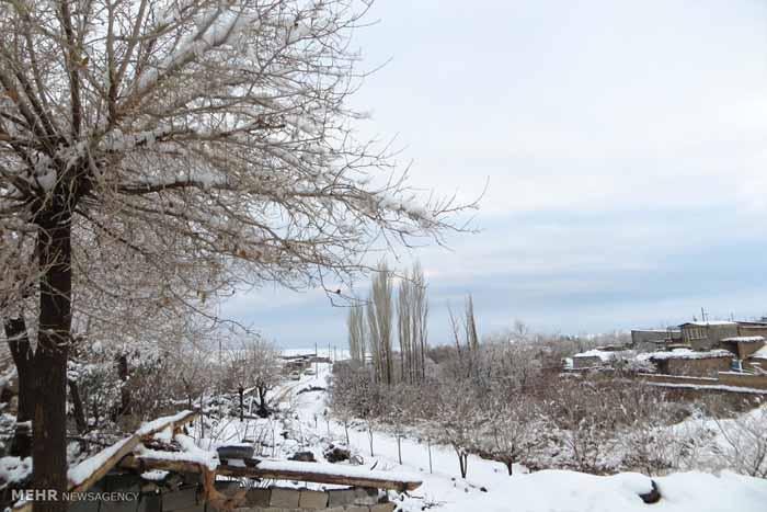 731763 تصاویر دیدنی از روستای پسوجان سیرجان