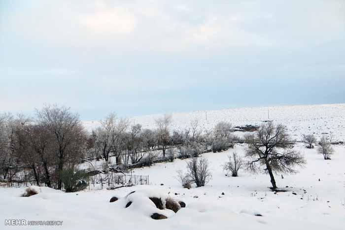 731765 تصاویر دیدنی از روستای پسوجان سیرجان