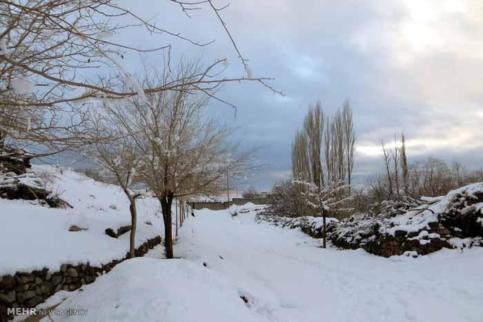 731767 تصاویر دیدنی از روستای پسوجان سیرجان