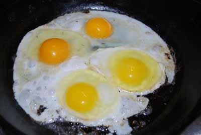 egg yolks چهار نکته درباره تخم مرغ که نمیدانستید