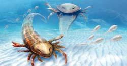 عقرب کشف فسیل عقرب دریایی عظیمالجثه