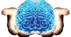 مغز راهی مطمئن برای افزایش قدرت مغز
