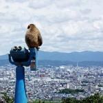 n00445427 r b 007 150x150 دیدنیترین شهر دنیا / گزارش تصویری