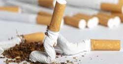 سیگار افزایش آمار زنان تحصیلکرده سیگاری